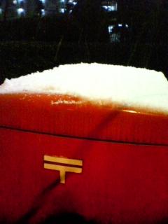 またまた雪です…
